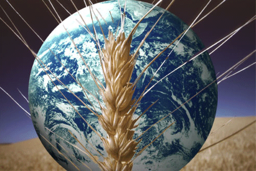 TIAA-CREF Announces $2 Billion Global Agricultural Investment Company