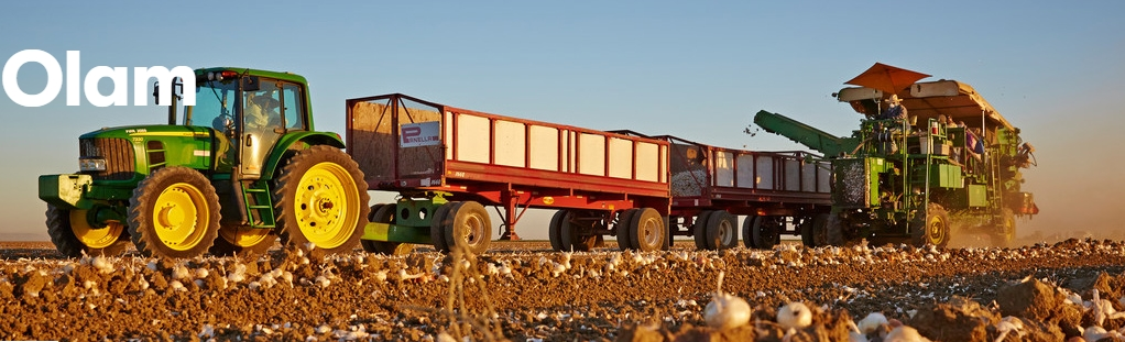 Olam sees potential in splitting commodities and food businesses